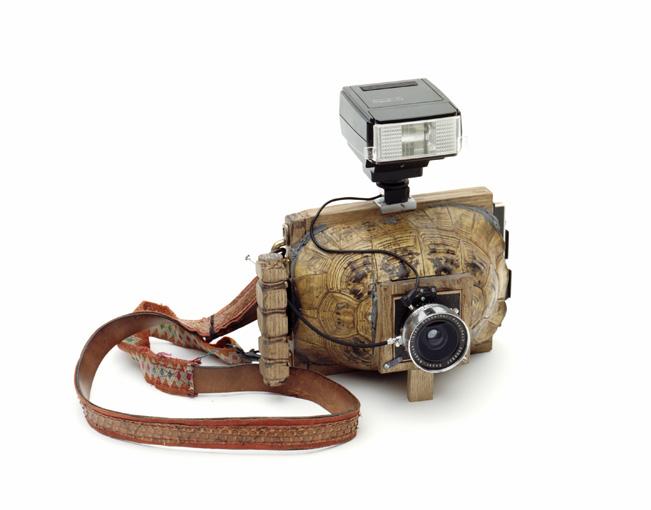 turtle camera
